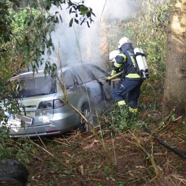 Feuerwehren verhindern bei KFZ Brand großflächigen Waldbrand